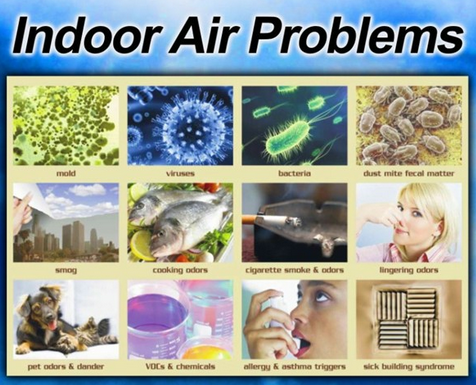 Indoor Air Quality Inspection California